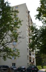 stefanikova_311.png